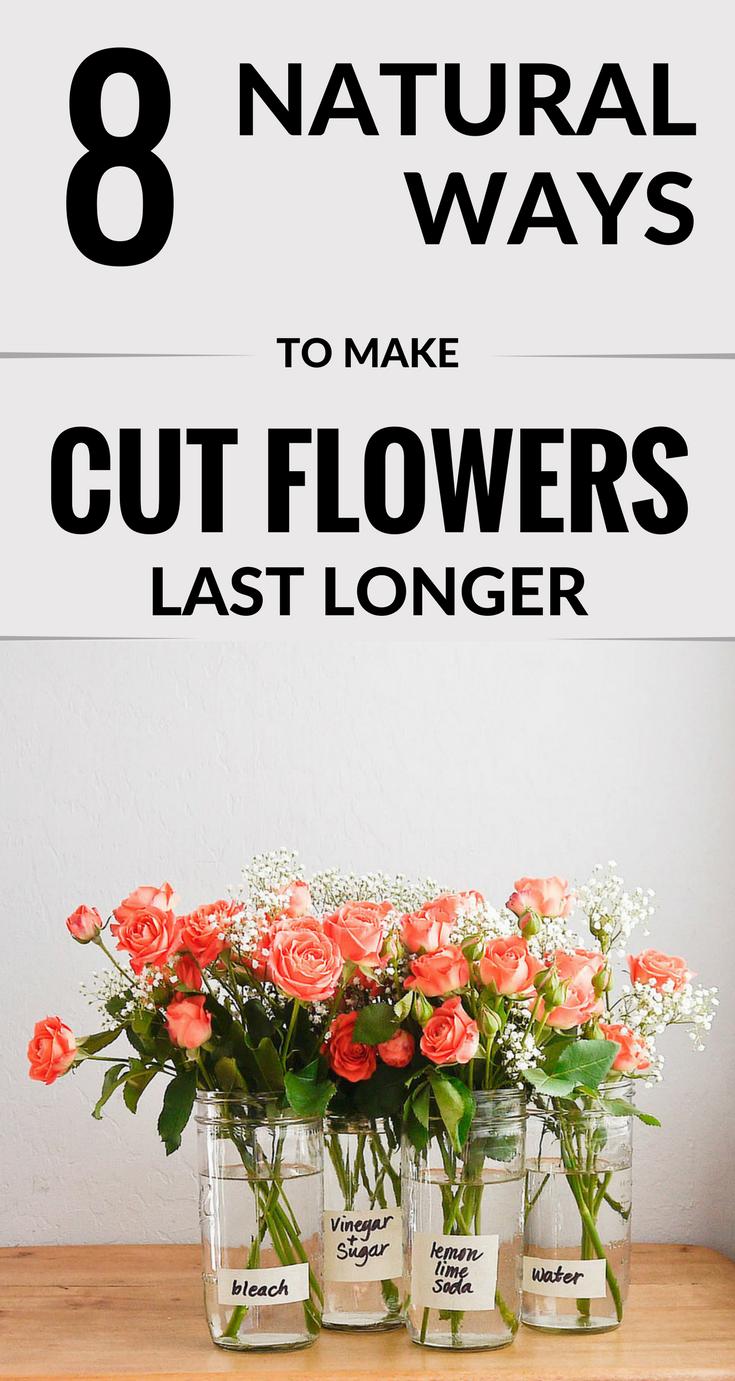 8 Natural Ways To Make Cut Flowers Last Longer